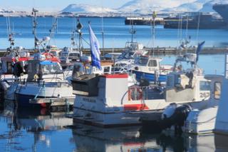 Reykjavík copy.jpg